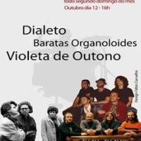 Violeta De Outono Ao Vivo No Rock Na Vitrine Em São Paulo