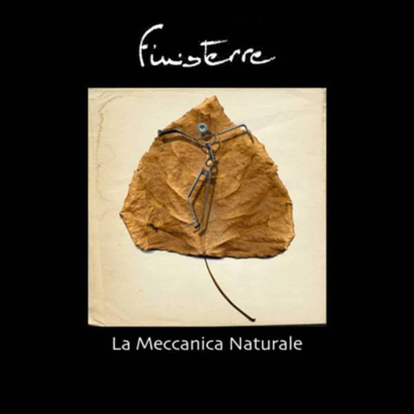 la-meccanica-naturale-2004