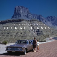 Resenha: The Pineapple Thief - Your Wilderness (2016)